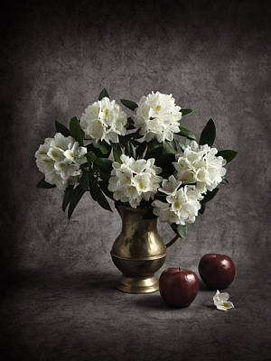 Red Apples And White Rhododendron Print by Jitka Unverdorben