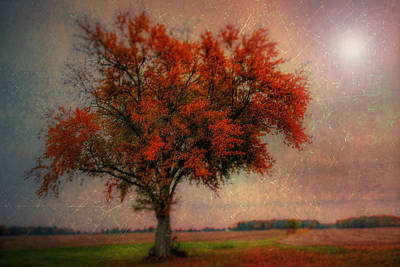 Autumn Landscape Mixed Media - Red Autumn by David Kuhn