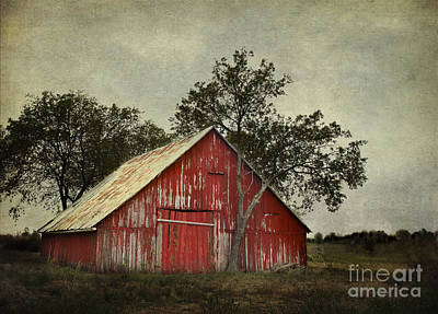Red Barn With A Tree Print by Elena Nosyreva