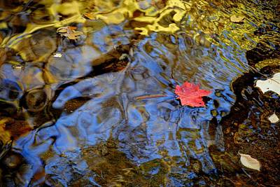 Red Blue And Gold Print by Frozen in Time Fine Art Photography
