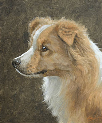 Charcoal Landscape Drawings Painting - Red Border Collie Portrait by John Silver