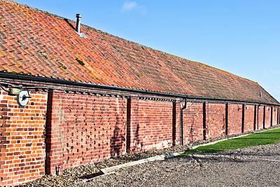 Red Brick Bard Print by Tom Gowanlock