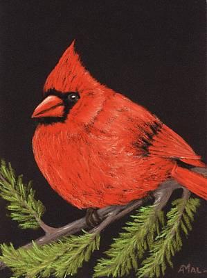 Holidays Painting - Red Cardinal by Anastasiya Malakhova