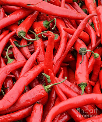 Chillie Photograph - Red Chilli Peppers by Aleksandar Mijatovic