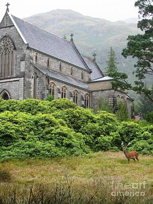 Water Photograph - Red Deer And Church by Denise Railey