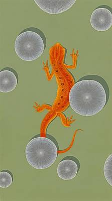 Newts Painting - Red Eft Newt by Nathan Marcy