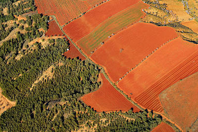 Red Fields Print by Guido Montanes Castillo