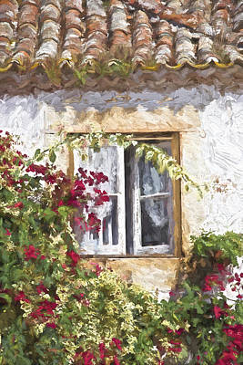 Red Flower Window Print by David Letts