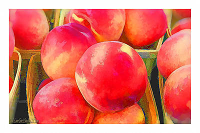 Basket Photograph - Red Haven Peaches Oil Paint by LeeAnn McLaneGoetz McLaneGoetzStudioLLCcom