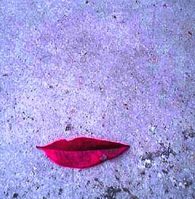 Pietyz Nature Mixed Media - Red Leaf On D Ground by Piety Dsilva