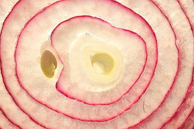 Red Onion Slice Miniature Art Print by Paul Ge