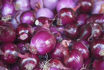 Onion Photograph - Red Onions For Sale At The Open Air by Mallorie Ostrowitz