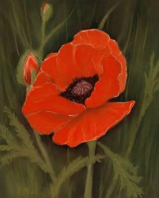 Bloom Painting - Red Poppy by Anastasiya Malakhova