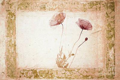 Red Poppy Print by Jochen Schoenfeld