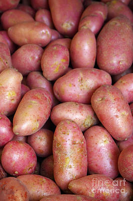 Red Potatoes Print by Carlos Caetano