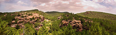 Teruel Photograph - Red Rock Green Forest No2 by Weston Westmoreland