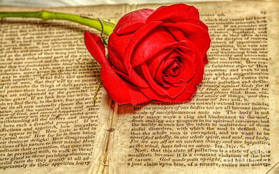 Red Rose And Old Book Still Life Two Print by Randy Steele