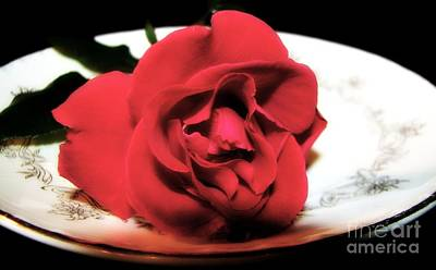 Romance Photograph - Red Rose On Antique Saucer With Soft Touch Effect by Rose Santuci-Sofranko