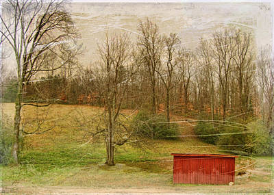 Red Shed Print by Paulette B Wright