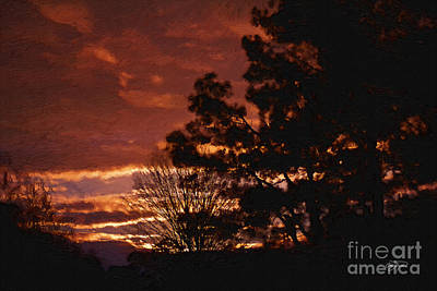 Red Sky At Night Print by Cris Hayes