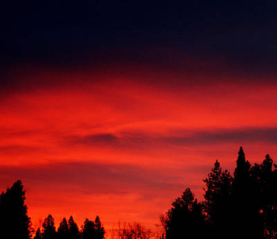 Red Sky In  The Bitterroot  Print by Larry Stolle