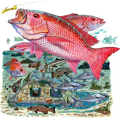 Mangroves Painting - Red Snapper by Carey Chen