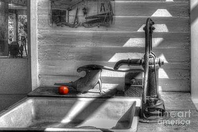 Red Tomato By Sink Print by Dan Friend