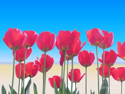 Tulips Photograph - Red Tulips by Scott Cameron