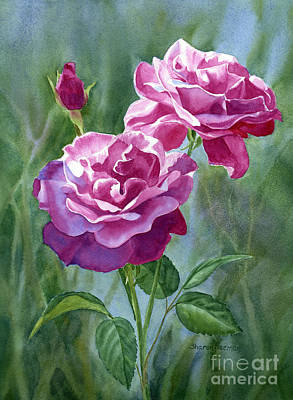 Red Violet Roses With Background Print by Sharon Freeman