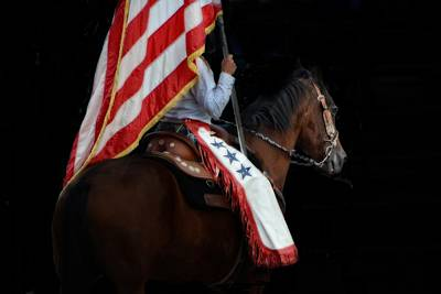 Horse Photograph - Red White Blue In Harmony by Emily Stauring
