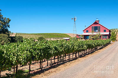 Red Wine Barn - Beautiful View Of Wine Vineyards And A Red Barn In Napa Valley California. Print by Jamie Pham