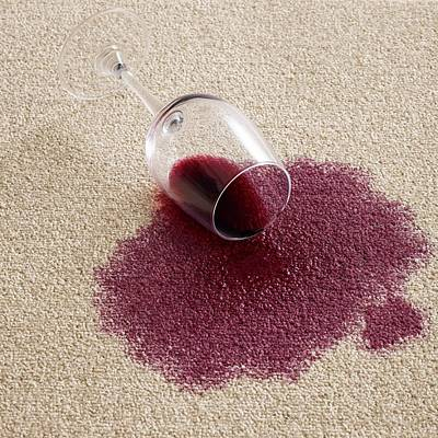 Red Wine On Carpet Print by Science Photo Library