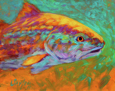 Flyfishing Painting - Redfish Portrait by Savlen Art