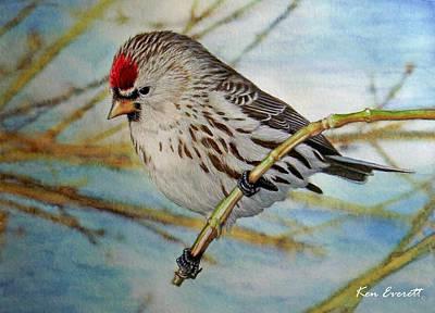 England Artist Painting - Redpoll   by Ken Everett
