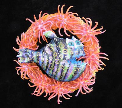 Palmfish Sculpture - Reef Magic by Dan Townsend