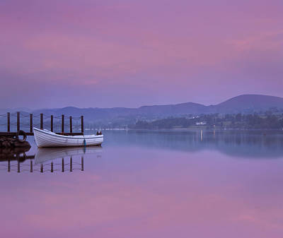 Pink Black Tree Rainbow Photograph - Reflecting The Morning Stillness by Adrian Campfield