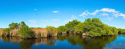 Cypress Swamp Photograph - Reflection Of Trees In A Lake, Big by Panoramic Images
