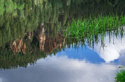 Reflections In A Mountain Pond Print by Mary Lee Dereske