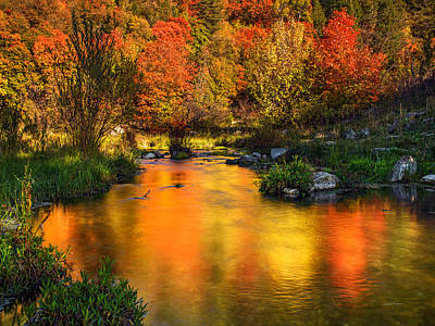 Reflections Of Autumn Print by Leland D Howard