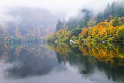 Reflections Of Fall Along The Umpqua Print by Patricia Davidson
