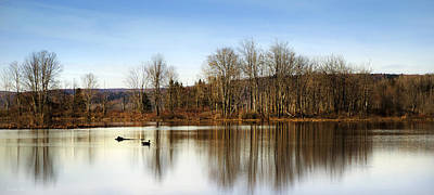 Reflections On Golden Pond Print by Christina Rollo