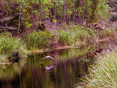 Reflections On The Stream  Print by Zina Stromberg