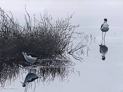 Reflections Print by Peter Mathios