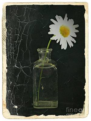 Aster Mixed Media - Remembrance 6 by Chalet Roome-Rigdon
