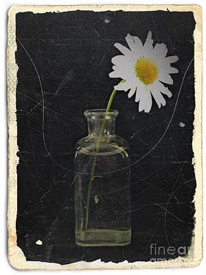 Aster Mixed Media - Remembrance 7 by Chalet Roome-Rigdon