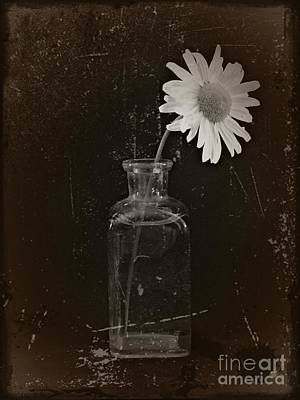 Aster Mixed Media - Remembrance Bw 2 by Chalet Roome-Rigdon