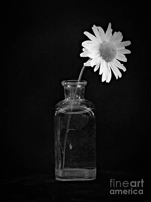 Neurotic Images Photograph - Remembrance Bw by Chalet Roome-Rigdon