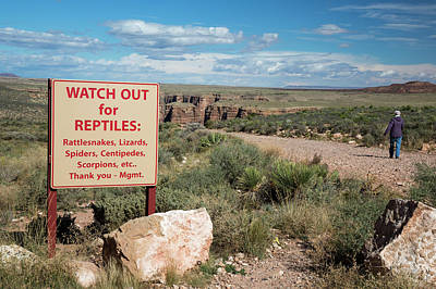 Reptiles Photograph - Reptile Warning Sign by Jim West