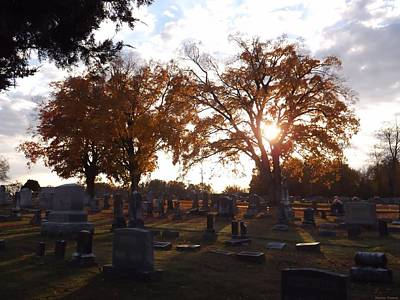 Elkton Photograph - Rest In Fall 2 by Shannon Freeman