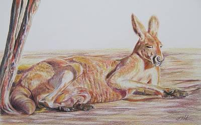Kangaroo Drawing - Resting Kangaroo by Leonie Bell